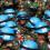 Понад 50 миротворців ООН загинули в 2017 році – звіт